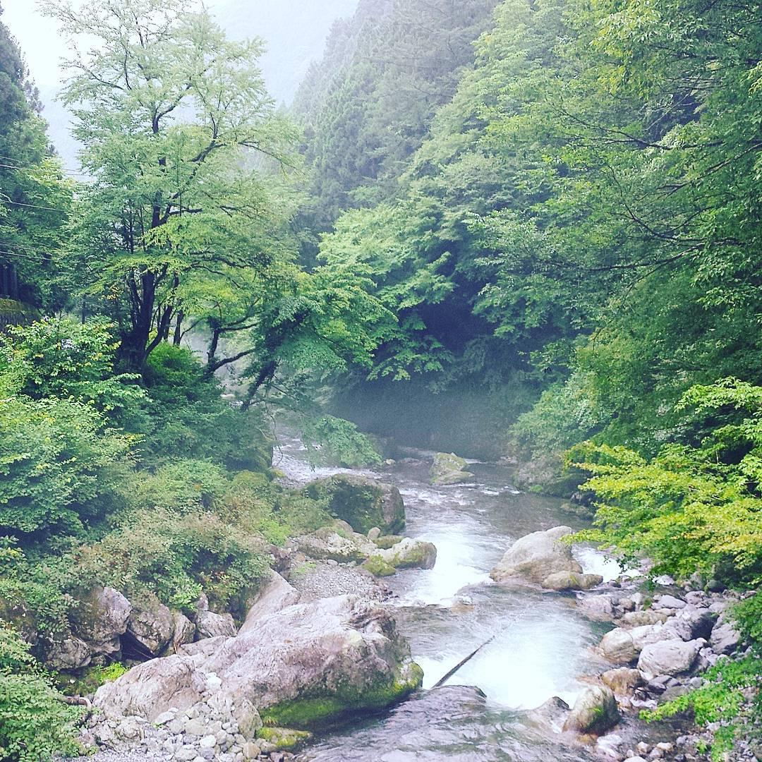 奥多摩の自然